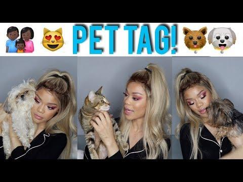 MCPAWS & CLAWS: PET TAG! | Meet My Kids ♡
