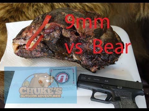 9mm vs a bear head: Underwood Extreme Penetrator