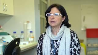 cancer : comment les cellules forment-elles des métastases ?