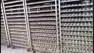 VIDEO SITEP FERRARA Cella da 70 carrelli