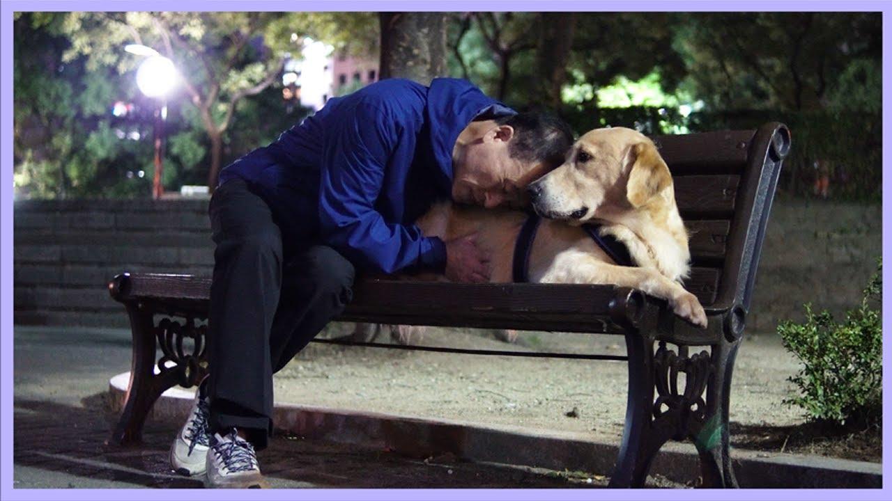 강아지를 사랑하는 아버지