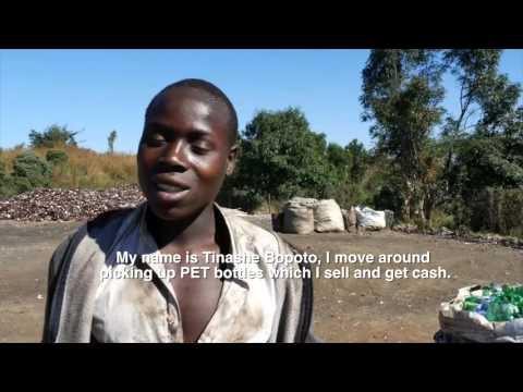 Pet Recycling Company of Zimbabwe (Petrecozim)