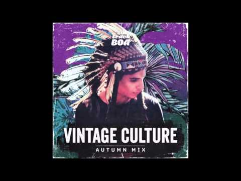 Vintage Culture & Alternative Kasual - Phoenix