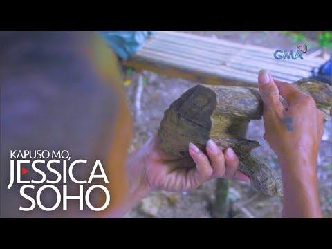 Kapuso Mo, Jessica Soho: Naging milyonaryo nang dahil sa puno ng lapnisan?