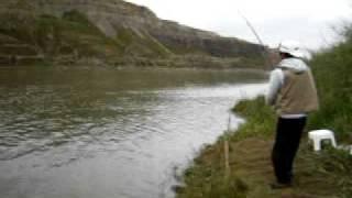 Phim | câu cá khổng lồ 1 | cau ca khong lo 1