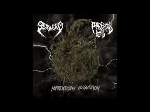 Sepolcro - Mastication Of Flesh