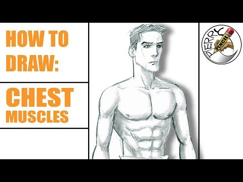 How to draw chest muscles, abs, and male upper body