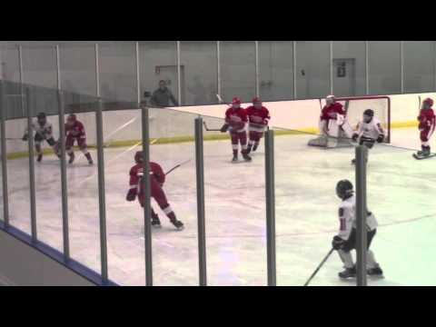 G1 Full Game Red Wings vs Columbus Capitals March 18 2016