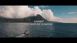 Kadavu: Fiji's Manta Ray Playground