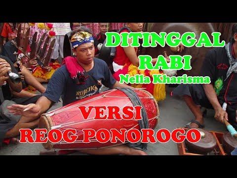 Ditinggal Rabi Nella Kharisma Versi Reog Ponorogo