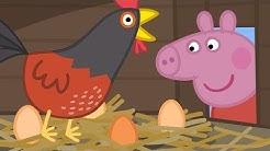 Peppa Pig Nederlands Compilatie Nieuwe Afleveringen 🐣 De Kippen Van Oma Big  | Tekenfilm