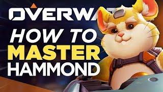 10 Ways To MASTER Hammond