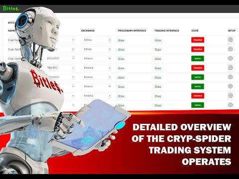 Forex Robot Developer