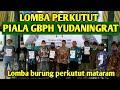 Lomba Perkutut Lokal Piala Gbph Yudaningrat Jogja Lomba Perkutut Lokal Suara Burung Perkutut  Mp3 - Mp4 Download
