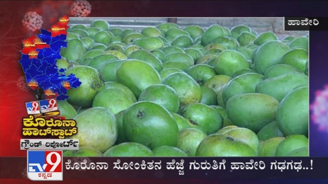 TV9 Ground Report From Coronavirus Hotspots Across Karnataka (14-05-2020)