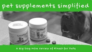 Pet Supplements for Big Dogs - A Review of Finest for Pets
