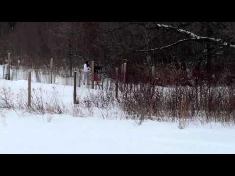 Winter - Crosswinds Arts and Science School