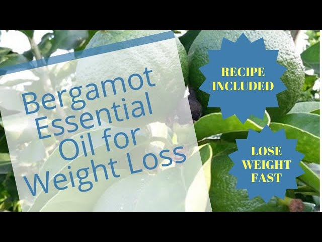 Bergamot Essential Oil for Weight Loss   Lose Weight Fast
