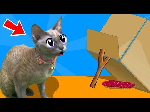 Смешные приколы и розыгрыши для котов! Пранки и идеи приколов как на канале АНУКА ДАВАЙКА!!!