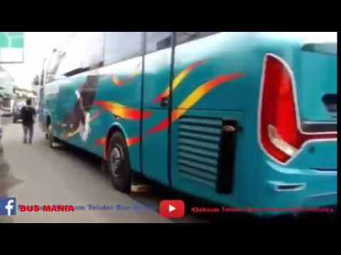 Klakson Telolet Bus Lagunya Cucak Rowo, Jablay, Ondel Ondel Bus Garuda Mas Lucu Gan