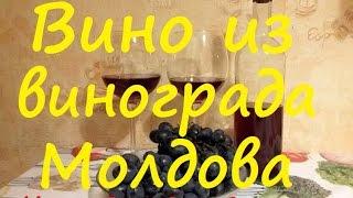 Вино из винограда Молдова. От Сан Саныча. Часть 1.(, 2015-11-21T22:40:34.000Z)