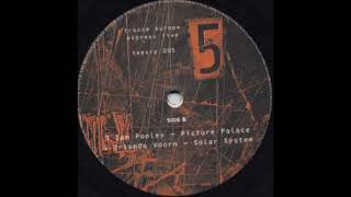 Ian Pooley - Picture Palace