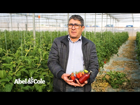 Organic Cherry Tomato Passata | Abel & Cole