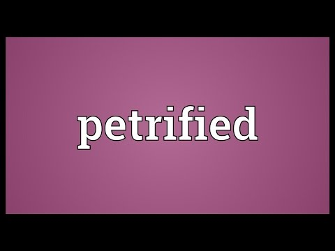Petrified Meaning