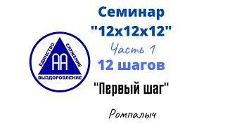 03 Первый шаг Ромпалыч Семинар 12х12х12 Часть 1 12 шагов