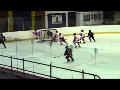 Rochester Red Wings vs Amherst Knights AAA Full Game January 11 2015