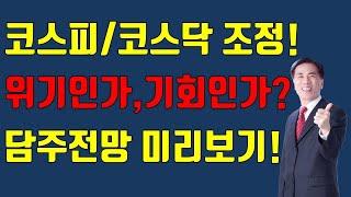 [주식][마감시황]국내증시조정, 위기인가?기회인가? 황…