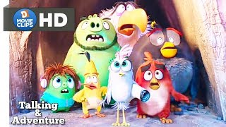 The Angry Birds Movie 2 Hindi Ice Ball Attack Talking & Adventure Scene MovieClips