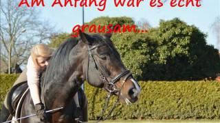 Winnetou's Geschichte - Ein Pferd, dass als Kämpfer geboren wurde
