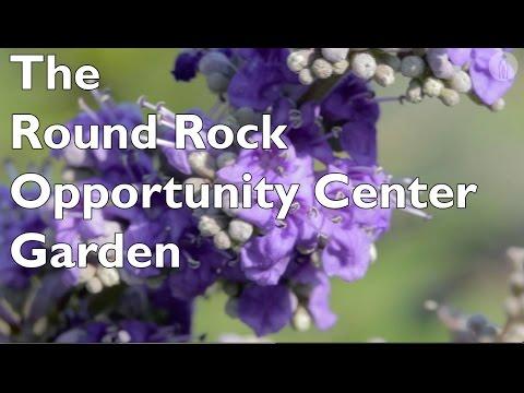 The Round Rock Opportunity Center Garden - Round Rock ISD