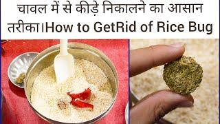 चावल को कीड़ो से बचाने के लिए ये तरीका अपनाएँ।How to kill and  prevent  Rice Bugs?