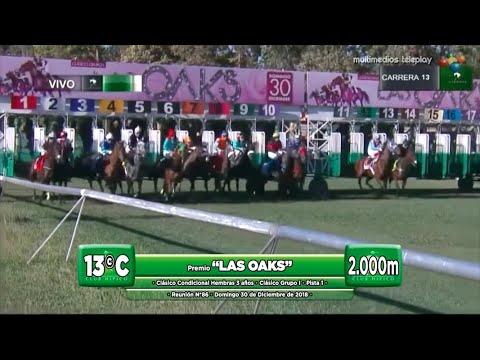 "(CHS) LA CAÑITA | Cl. ""Las Oaks"" - 2.000m G.I | Domingo 30/12/2018"