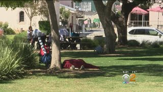 Concern Grows Over Homelessness, Incident Of Sex In Public At Popular Santa Monica Park