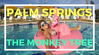 The Monkey Tree Hotel in Palm Springs