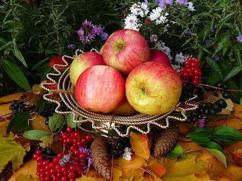Натюрморты с яблоками