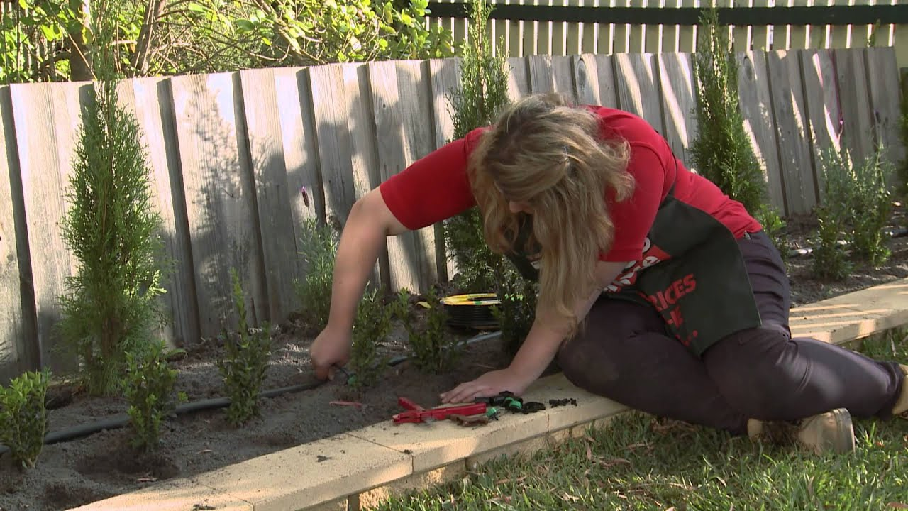 How To Install Irrigation Sprayers And Drippers Diy At Bunnings Youtube