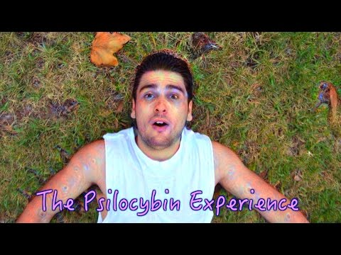 What SHROOMS Feel Like | The Psilocybin Mushroom Experience