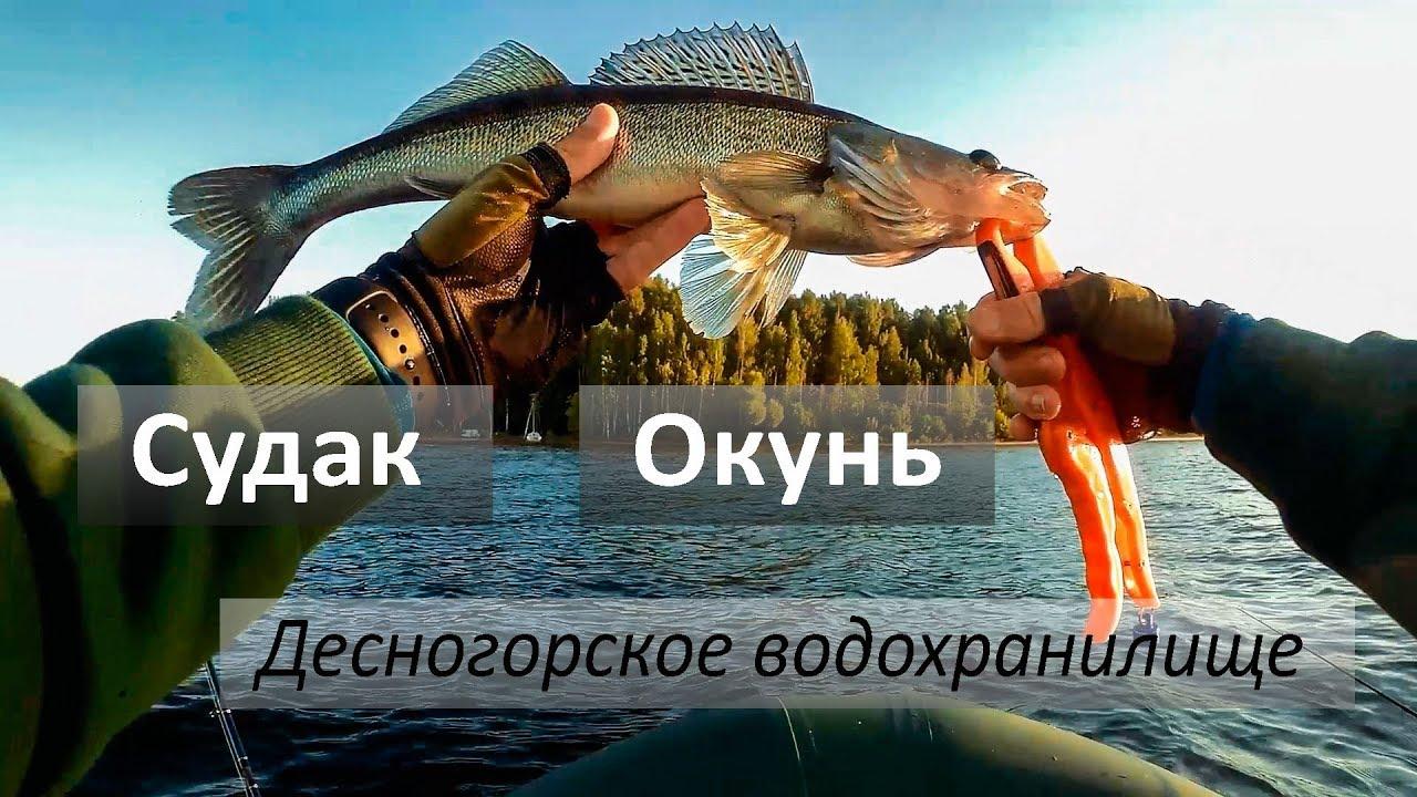 рыбалка в десногорске 2017