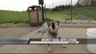 Dayton Ranks No. 13 in Dog Bite Claims; Ohio Ranks No. 4
