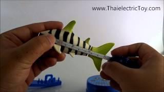 Repeat youtube video ของเล่นปลาฉลามบังคับ สามารถว่ายน้ำได้จริงๆ