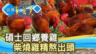 """雞大俠的""""柴燒滴雞精""""【台灣真善美】2019.08.04"""