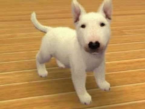 Nintendogs Cats My Dog Crystal Youtube