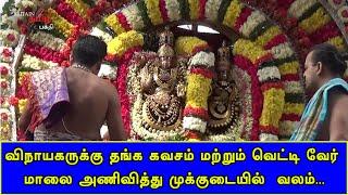 விநாயகருக்கு தங்க கவசம் மற்றும் வெட்டி வேர் மாலை அணிவித்து முக்குடையில்  வலம் | Thiruvannamalai