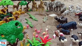 Playmobil Safari Wild Animals Toys in the Sandbox - Learn Animal Names For Kids