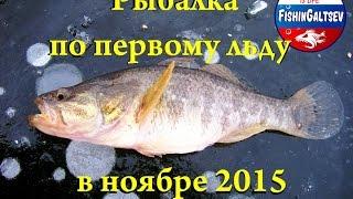 Рыбалка по первому льду в ноябре 2015 FishinGaltsev.