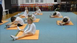 Детский фитнес.  Упражнения с гимнастической палкой